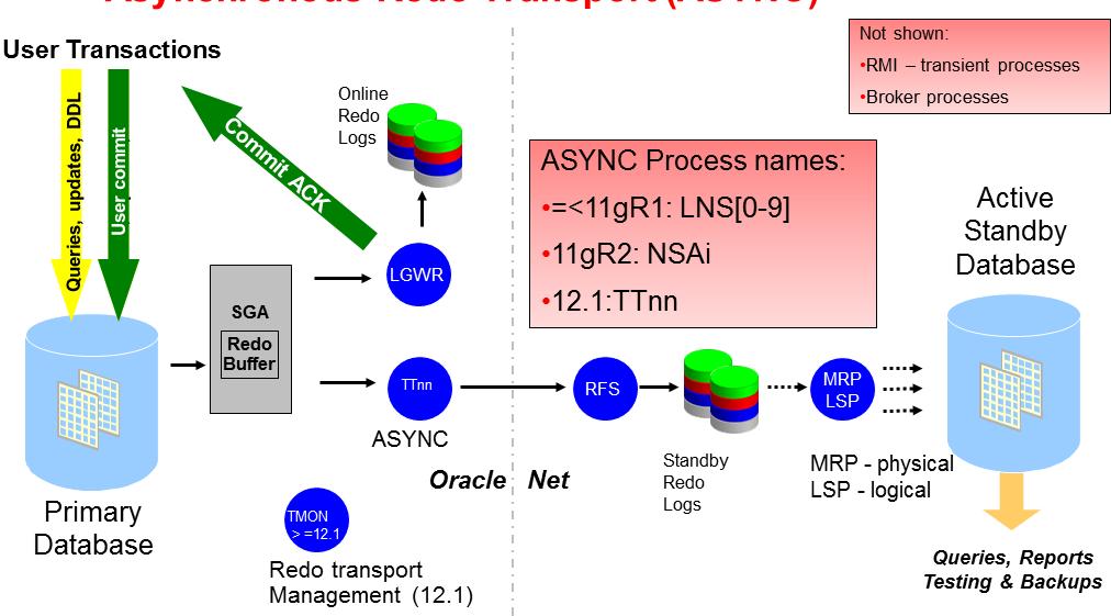 TTnn TMON Data Guard ASYNC