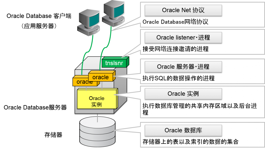 Oracle Database 的网络连接